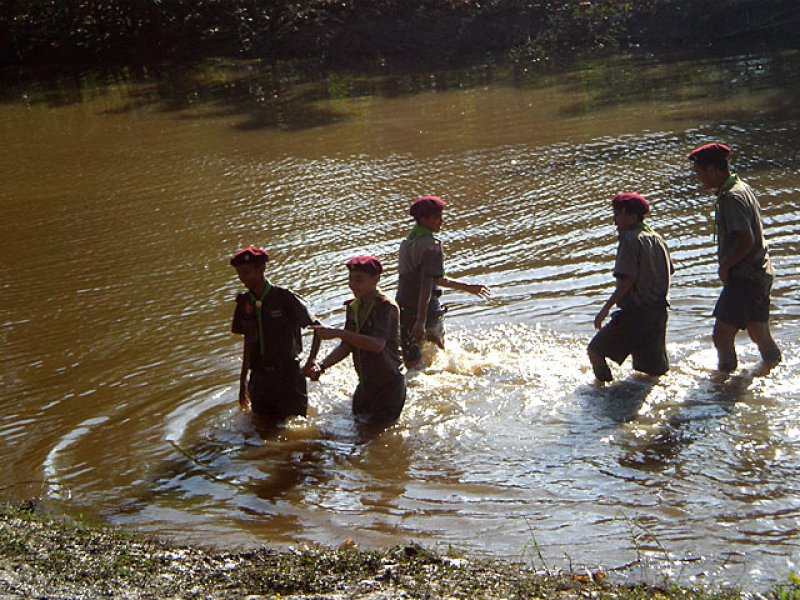 Swimming-Scouts